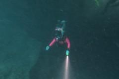 DiverHlight