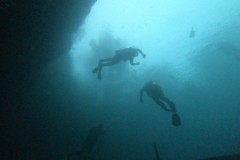 Divers-above