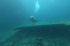 diver-r1